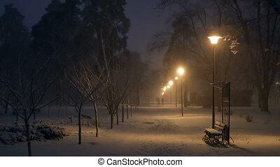 lampe, parc, chute neige, nuit