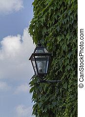 lampe, straße