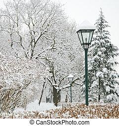 lampione, e, foresta, parco, in, pesante, neve