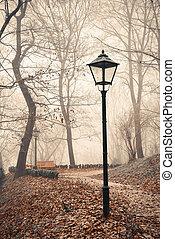 lampione, in, nebbioso, foresta autunno, parco