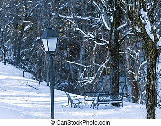 lamppost in snowy park