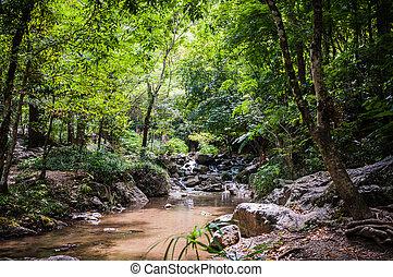 lan, natural, cascada, parque, cantó, tailandia