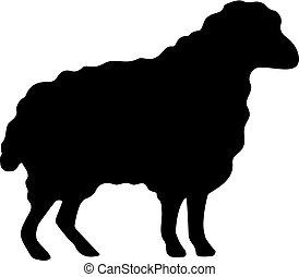 lana, silhouette, vettore, sheep, icona