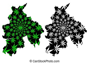 Lancashire (United Kingdom, England, Non-metropolitan county, shire county) map is designed cannabis leaf green and black, Lancs. map made of marijuana (marihuana, THC) foliage