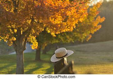 lancaster, pensilvânia, noite, nebuloso, outono