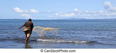 lancio, indigeno, fijian, pescatore, rete pesca, figi
