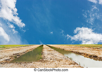 Land and water with blue sky