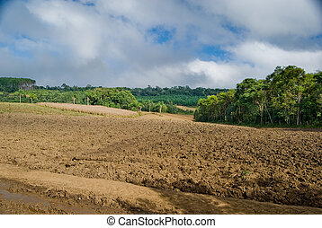 Exposed soil on forest converted to agricultural production area in southern Brazil.