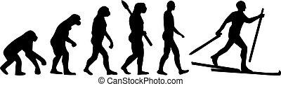 land, evolutionsphasen, ski, kreuz