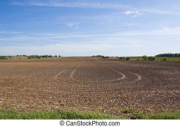 land - Farm field and green grass under blue sky
