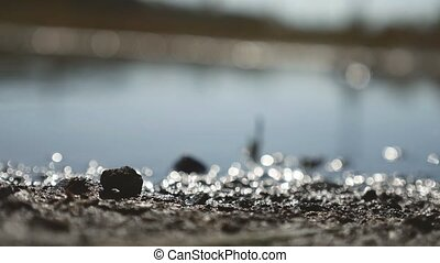 land lake water with blurred background highlights bokeh -...