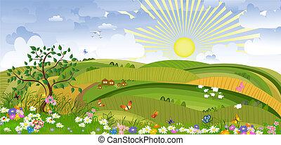 land, landschaftsbild