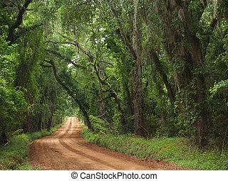 land, lera, röd väg, canopied