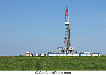 land oil drilling rig on green wheat field