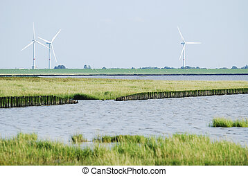 Land reclamation in the Wadden Sea (Schob?ll, Germany)
