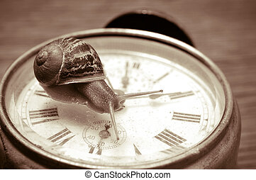 a land snail on an old desktop clock, in sepia tone