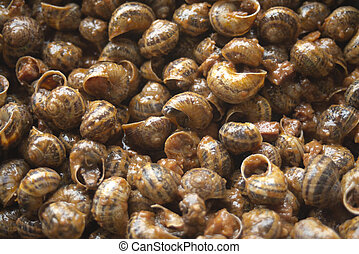 land snails in sauce, gastronomy