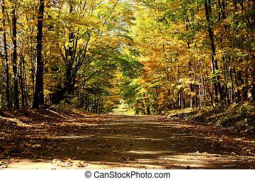land straat in de herfst