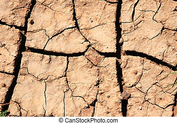 land texture