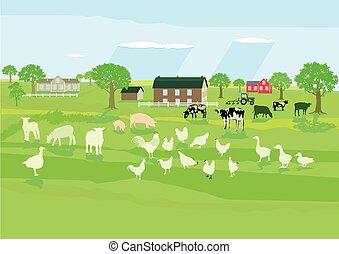 Land und Tiere