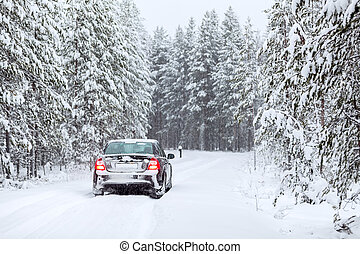 Land vehicle driving on a country road in wintry northern...