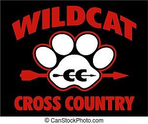 land, wildcat, kors