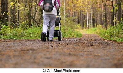 landau, marche, parc, long, femme, sentier