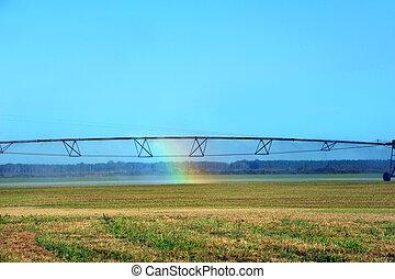 landbouw, hoop, in, regenboog