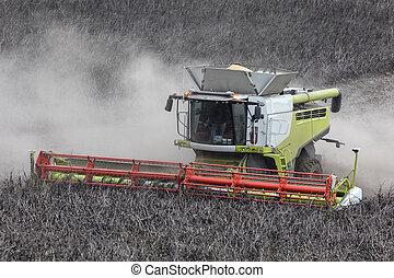 landbouw, oogster, -, samenvoegen
