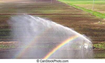 landbouwkundig, het systeem van de irrigatie, land.