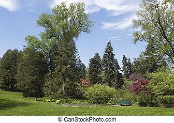 landcsape in the park