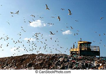 landfill, arbeitende