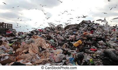 landfill, wózek