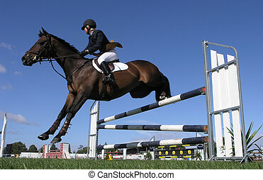 A horse clearing a jump. Taken at the Horse of the Year 2007 in Hastings New Zealand