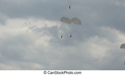 landing of parachutists in the sky. - landing of...