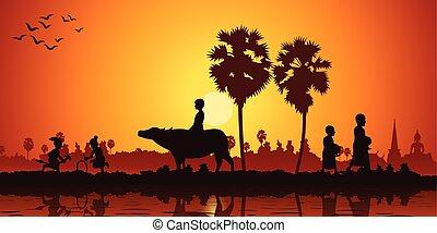 landleben, von, asia, kinder, spielen, banane, pferd fahrt, büffel, während, mönch, empfangen, lebensmittel, auf, sonnenaufgang, zeit