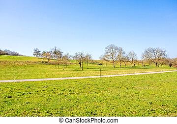 landlige, grønnes landskab