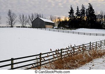 landlige, vinter landskab