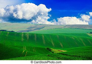 landligt landskab, vej
