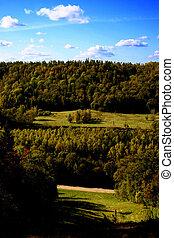 landscape - 2