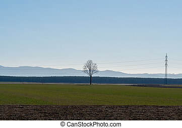 Landscape agriculture fields