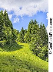 Landscape Allgaeu - Landscape on the Alpspitz near...