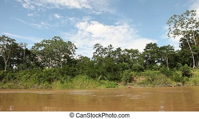 Landscape At Amazon River