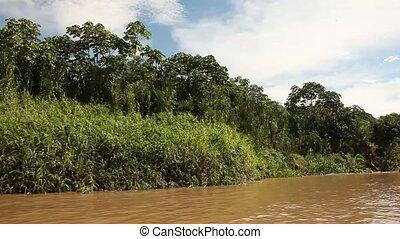 Landscape At Amazon River