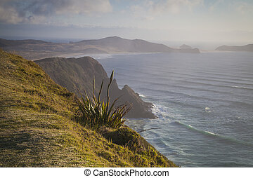 Landscape at Cape Reinga New Zealand
