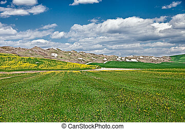 landscape at spring of the hills in the Crete Senesi, to the south of Siena in Tuscany, Italy