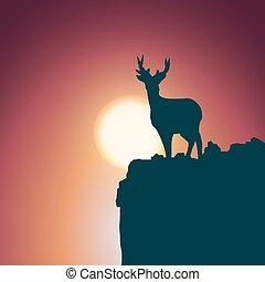 Landscape background. Deer standing on a hill