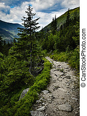 Stone walkway into the valley