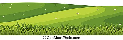 Landscape background with green grass on hills
