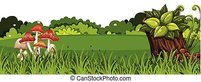 Landscape background with mushroom on green grass